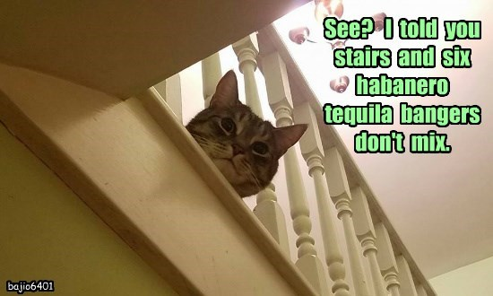 See?   I  told  you  stairs  and  six  habanero  tequila  bangers  don't  mix.