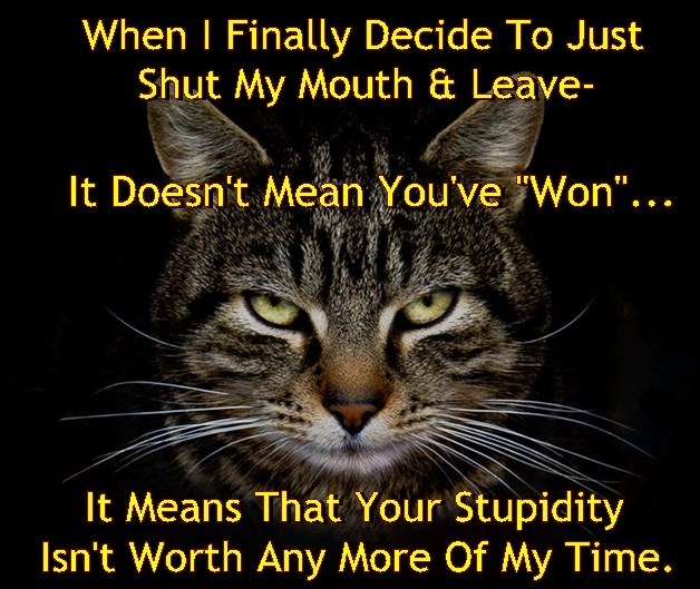 CATitude Cat Has Had Enough of the BS...