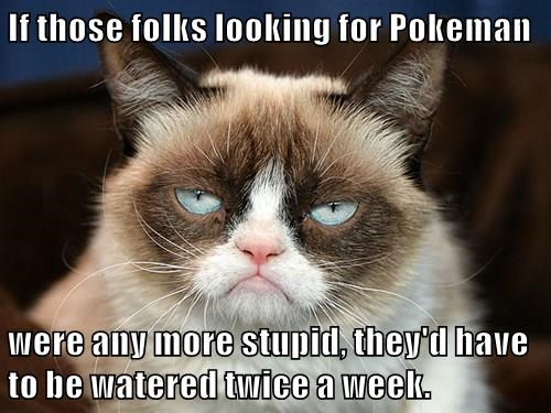 If those folks looking for Pokeman  were any more stupid, they'd have to be watered twice a week.