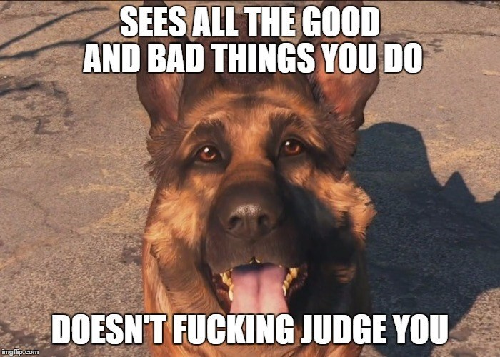 video-games-fallout-logic-dogmeat-the-best-follower