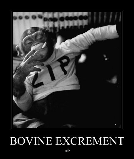 BOVINE EXCREMENT