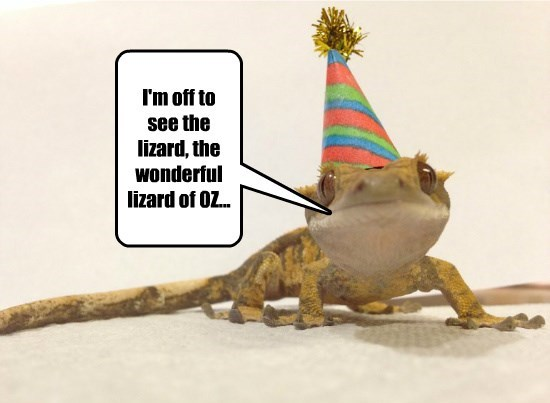 I'm off to see the lizard, the wonderful lizard of OZ...