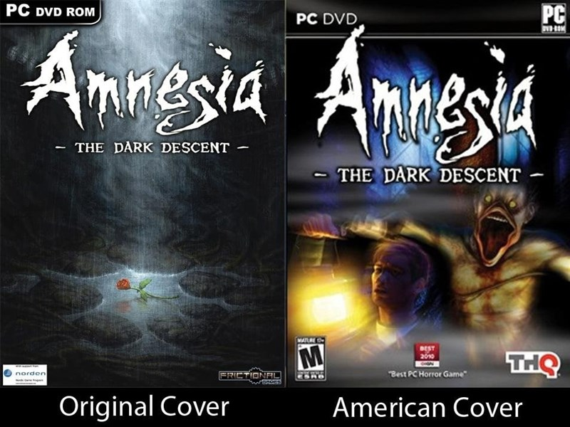 video-game-covers-amnesia-what-happened