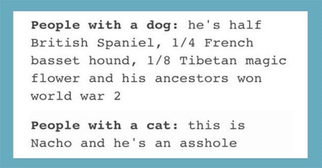 Cat people vs. dog people