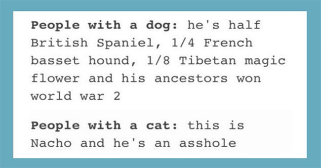Cat people vs. dog people