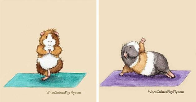 guinea pigs yoga art