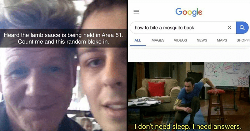 Fresh dank memes, funny memes, gordon ramsay area 51 meme, and how to bite mosquitoes back meme