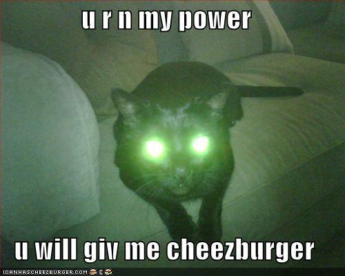 Cheezburger Image 885026560