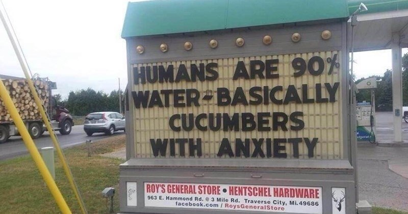funny sign about the biology of humans and cucumbers