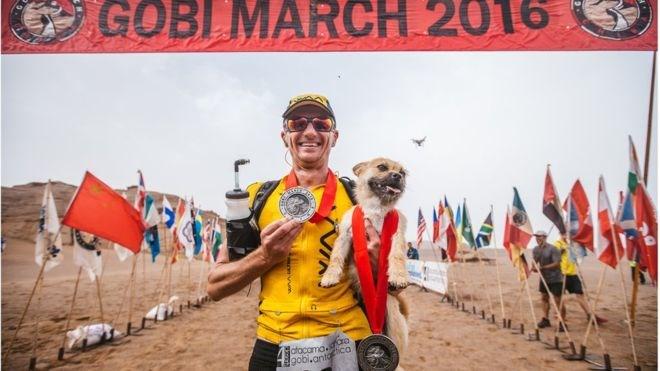 adopt dogs China friends running marathon stray - 886533