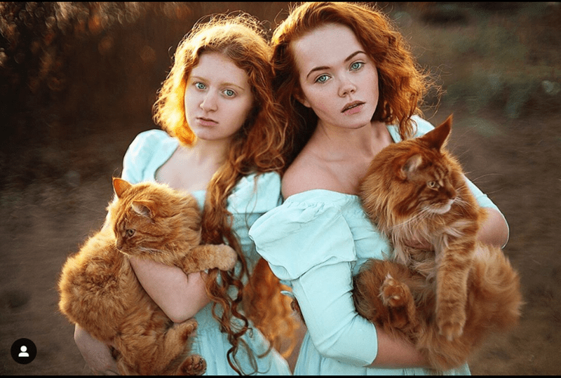 redhairs with cats