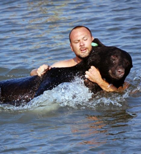 black bear rescue drowning