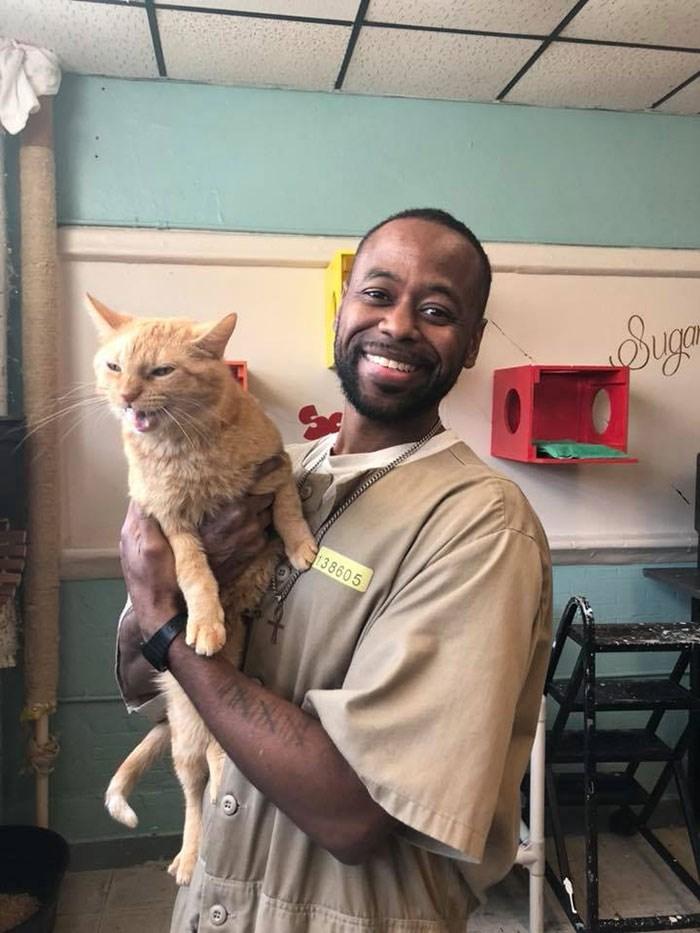 prisoners cats shelter program