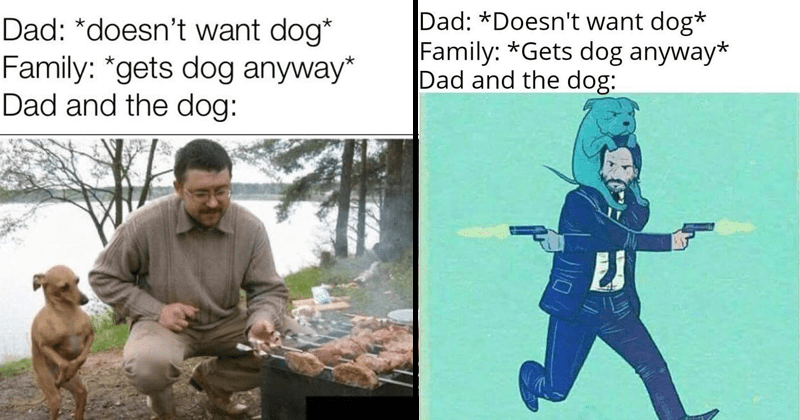 Dad and the dog memes, keanu reeves, john wick, john wick memes, silly memes, dogs, dog memes, doggo memes, furries, animal memes, family gets a dog | Dad doesn't want dog Family gets dog anyway Dad and dog: john wick shooting pistols with a dog on his head. man grilling and a dog standing on two waiting by his side.