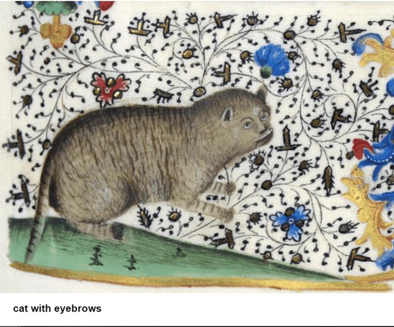 medieval cat art
