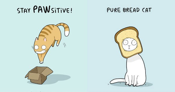 illustrations,puns,Cats