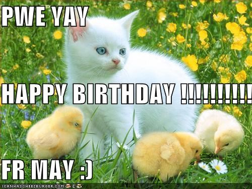 Pwe Yay Happy Birthday Naw Fr May Cheezburger Funny Memes Funny Pictures Are you looking for a funny birthday meme? cheezburger