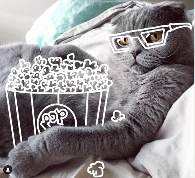 cat illustrations funny cats cat doodles Cats - 8953605