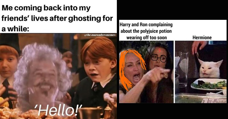 Funny Harry Potter memes