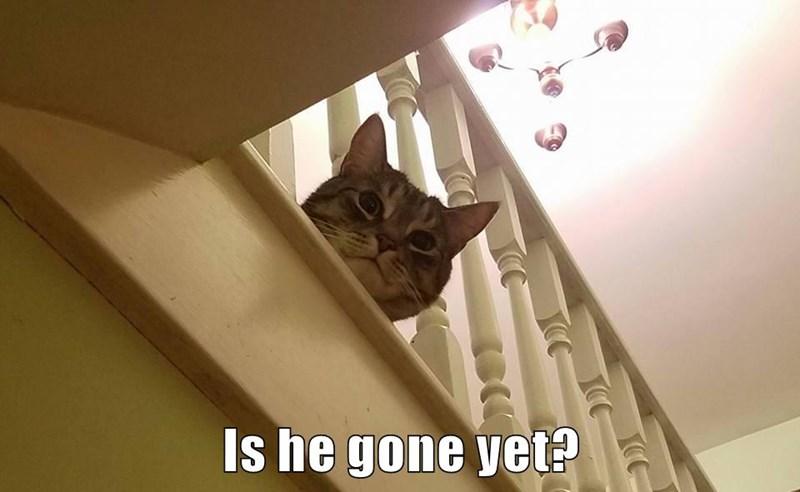 Is he gone yet?