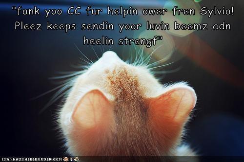 """fank yoo CC fur helpin ower fren Sylvia! Pleez keeps sendin yoor luvin beemz adn heelin strengf"""