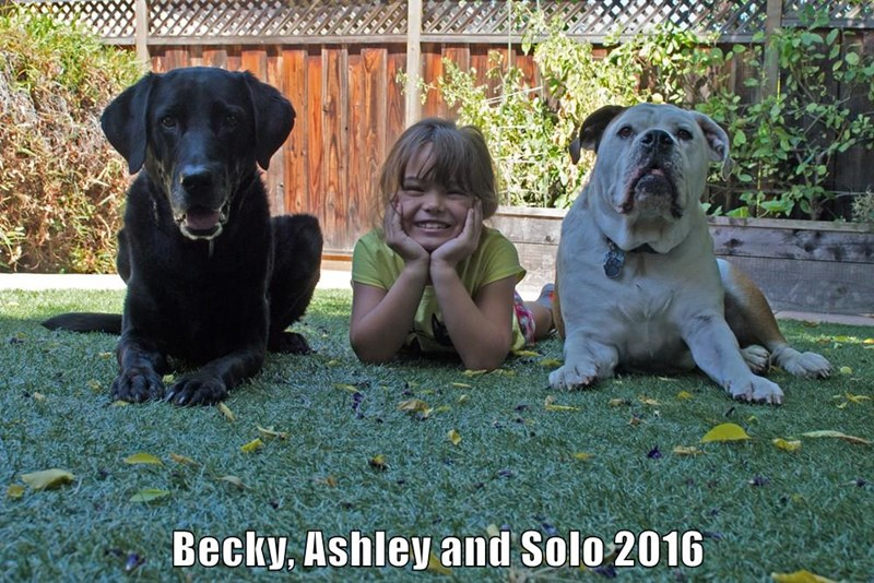 Becky, Ashley and Solo 2016