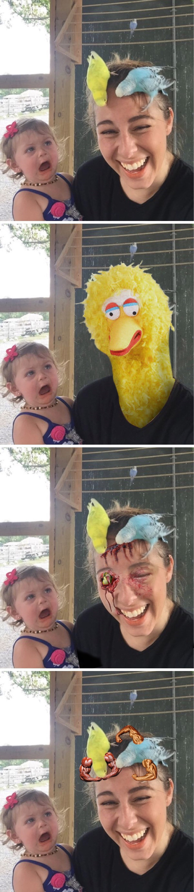 birds,photoshop,parenting