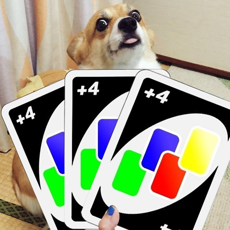 Dog - +4 +4 +4