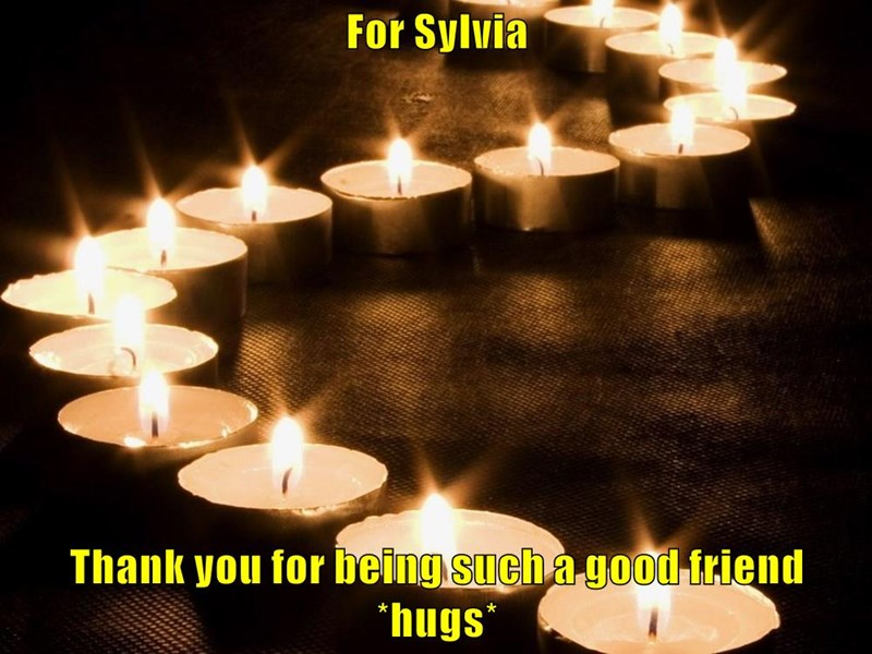 For Sylvia  Thank you for being such a good friend *hugs*