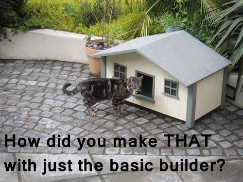 How did you make THAT with just the basic builder?