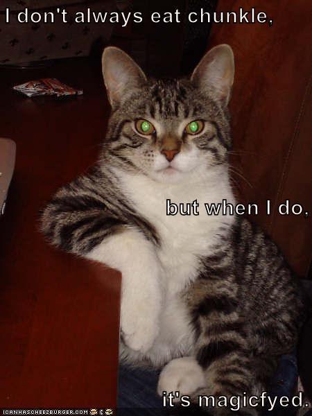 animals cat caption eat chunkle magicfyed - 8965066752