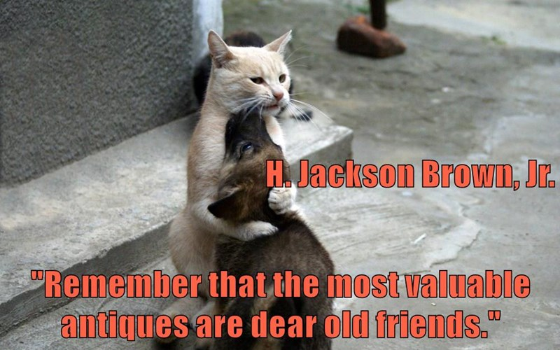 """H. Jackson Brown, Jr.  """"Remember that the most valuable antiques are dear old friends."""""""
