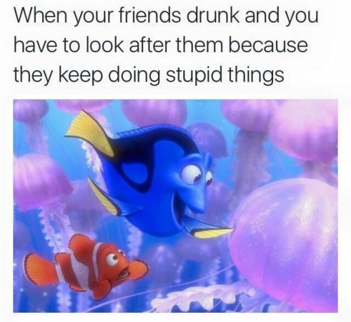 image drinking finding nemo Dory We Literally Just Got Food a Minute Ago