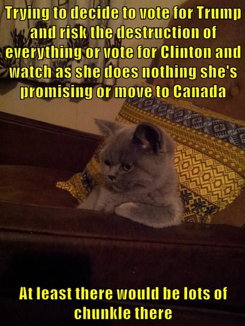 Trying to decide to vote for Trump and risk the destruction of everything or vote for Clinton and watch as she does nothing she's promising or move to Canada  At least there would be lots of chunkle there