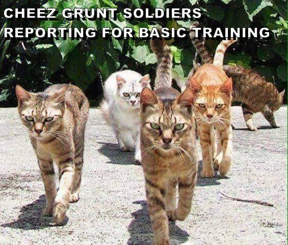 CHEEZ GRUNT SOLDIERS REPORTING FOR BASIC TRAINING