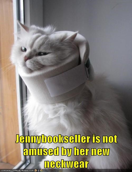 Jennybookseller is not amused by her new neckwear