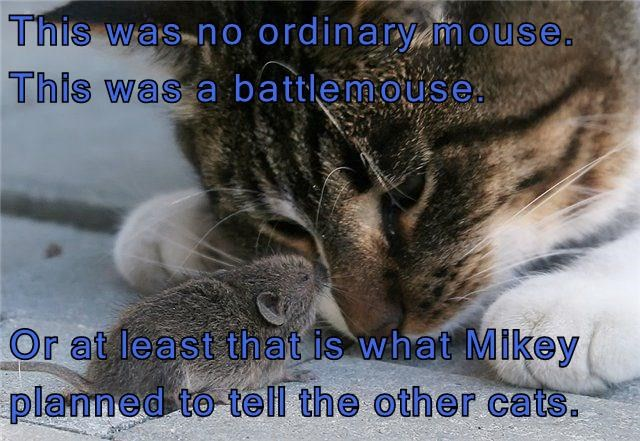 This was no ordinary mouse.
