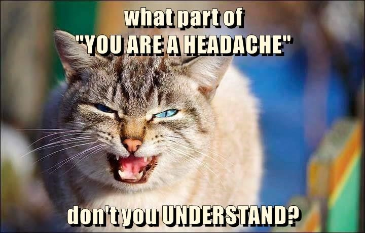 """what part of                                                                                           """"YOU ARE A HEADACHE""""              don't you UNDERSTAND?"""