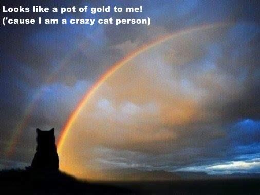 Looks like a pot of gold to me!                                                                        ('cause I am a crazy cat person)