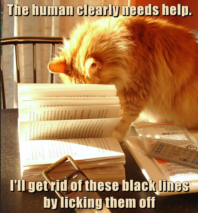 The human clearly needs help.   I'll get rid of these black lines by licking them off