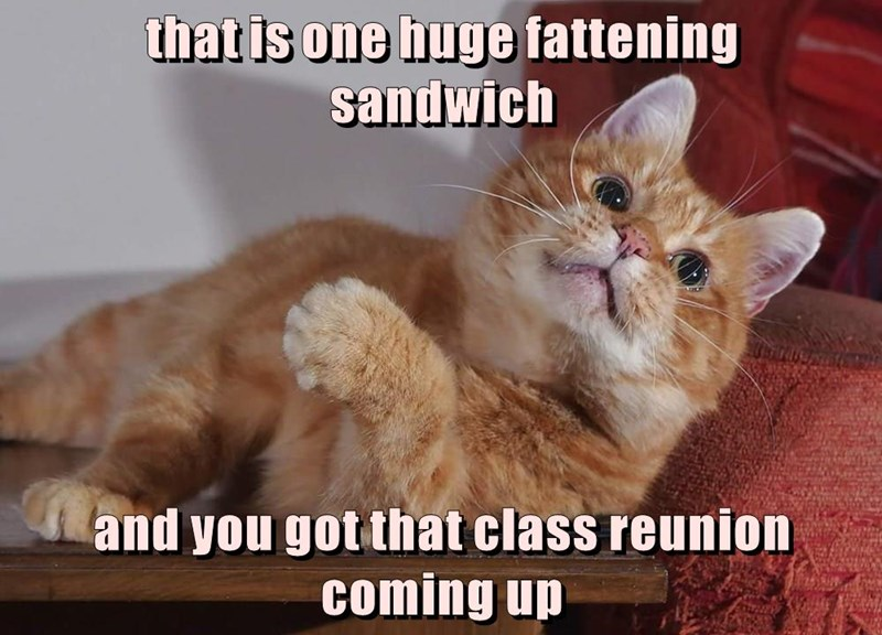 that is one huge fattening                     sandwich   and you got that class reunion coming up