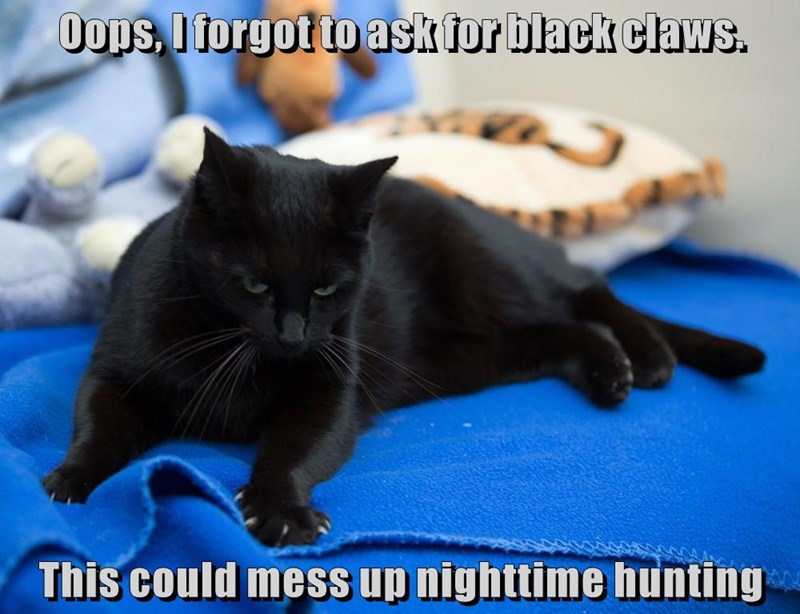 Oops, I forgot to ask for black claws.  This could mess up nighttime hunting