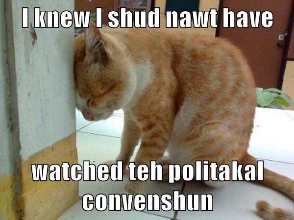 I knew I shud nawt have  watched teh politakal convenshun