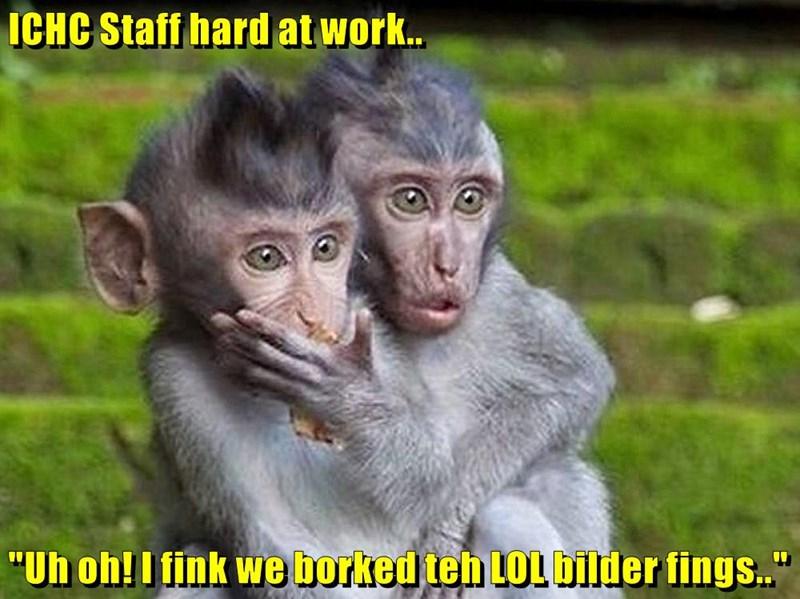 """ICHC Staff hard at work..  """"Uh oh! I fink we borked teh LOL bilder fings.."""""""