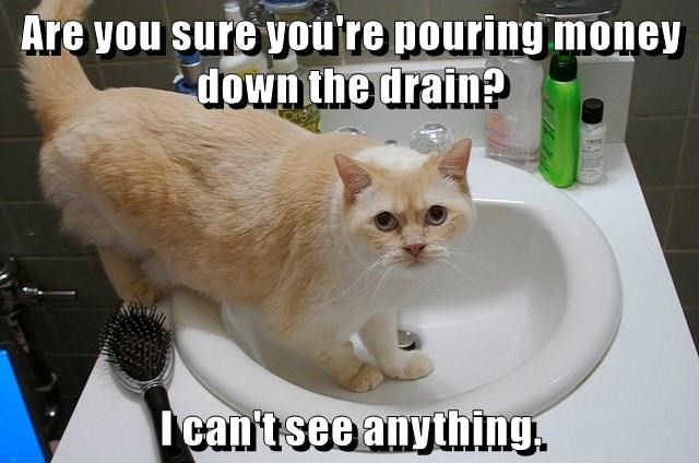 Are you sure you're pouring money down the drain? I can't see anything.
