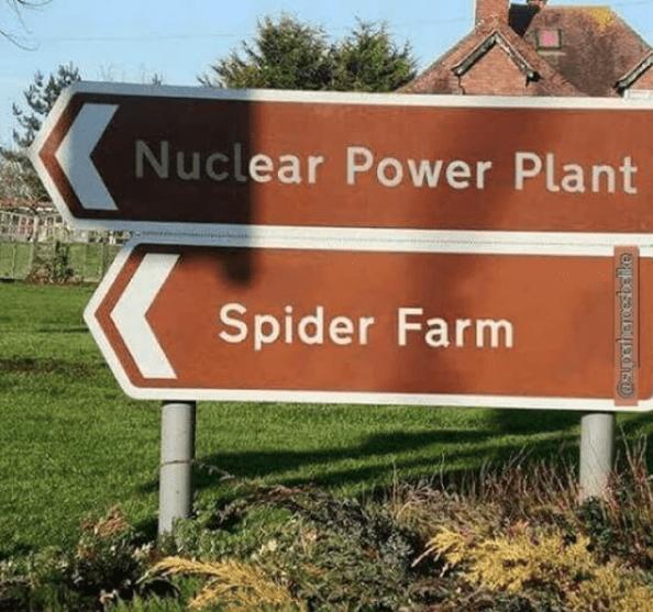 nuclear-power-plant-plus-spider-farm-equals-peter-parker