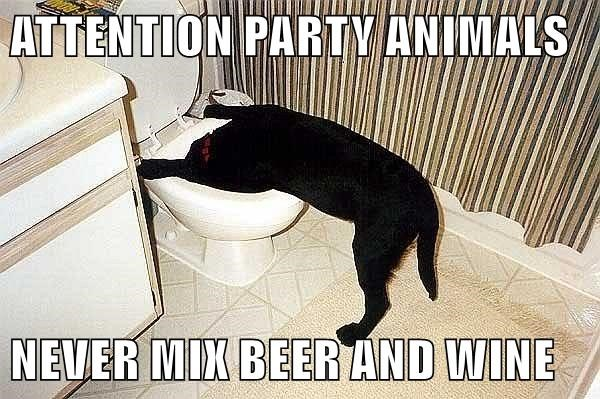 ATTENTION PARTY ANIMALS  NEVER MIX BEER AND WINE