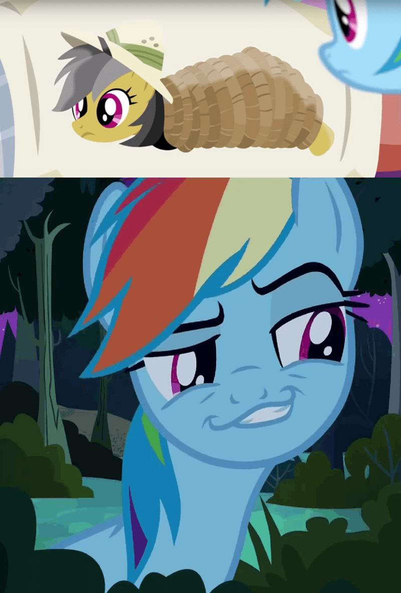 quibble pants stranger than fan fiction daring do body pillow rainbow dash - 8966141184