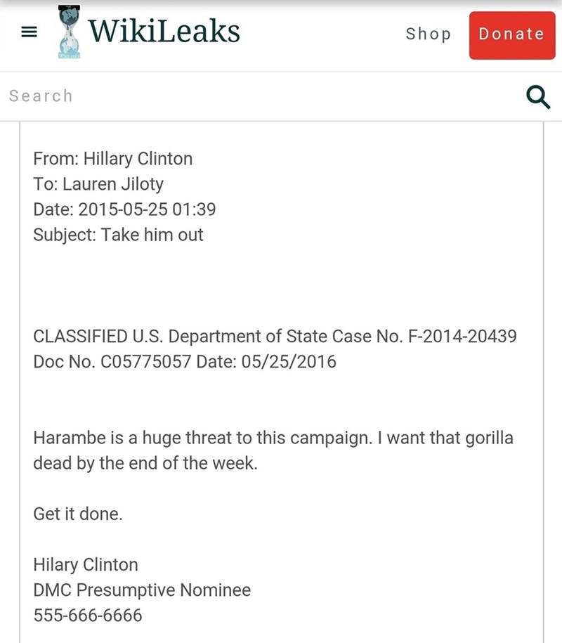 Hillary Clinton Democrat - 8966172928