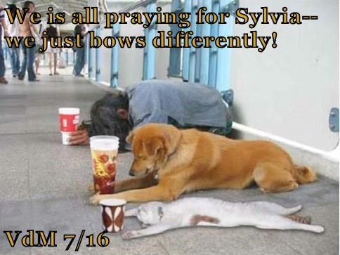 We is all praying for Sylvia--we just bows differently!  VdM 7/16